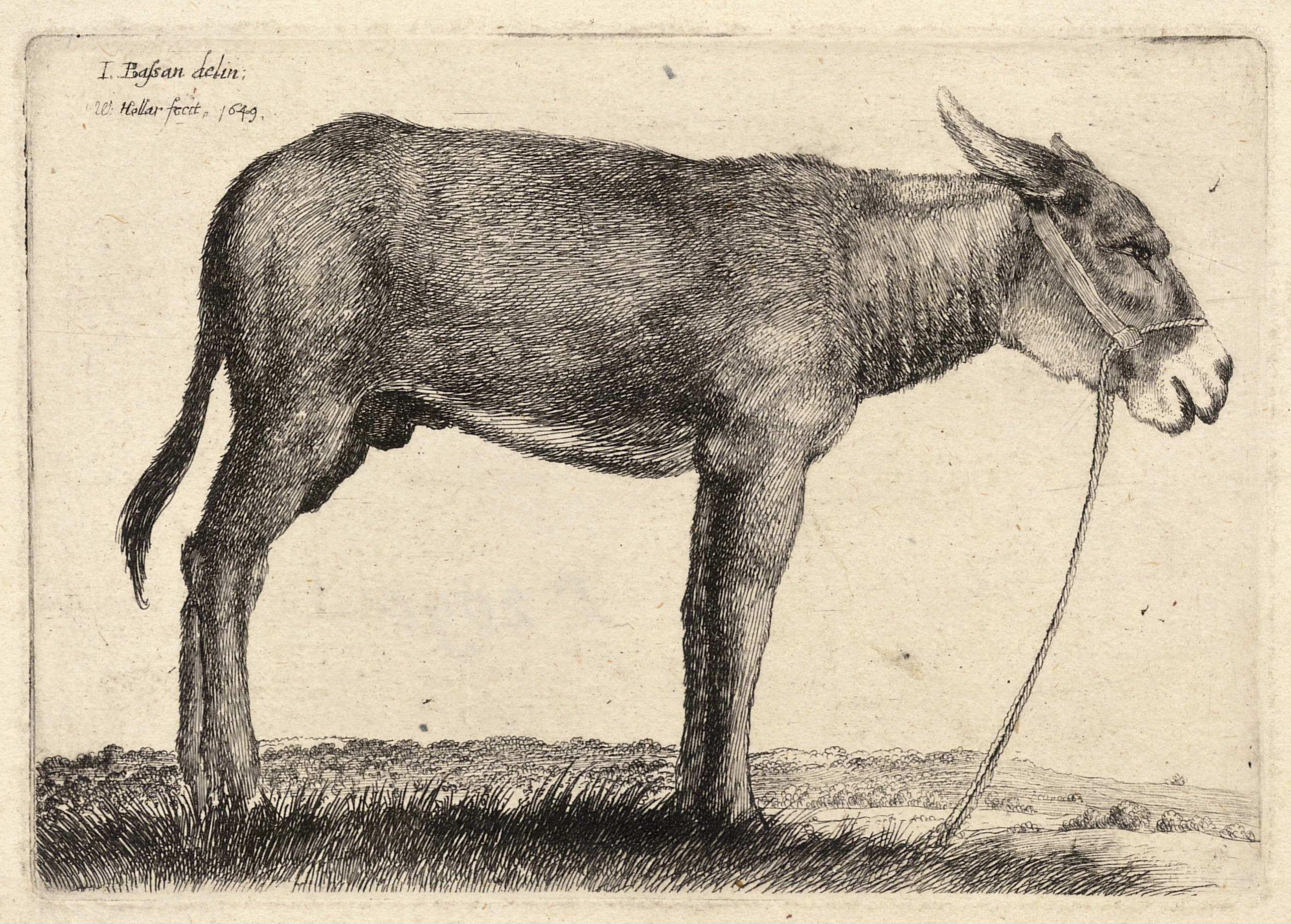 The Donkey by G.K. Chesterton – theolatte